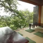 上野で子連れランチに最適な座敷があるお店5選